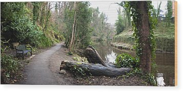 Water Of Leith Wood Print by David Armas