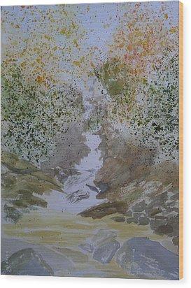 Waterfall Abstract Wood Print by Joel Deutsch