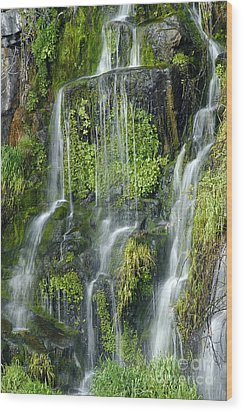 Waterfall At Columbia River Washington Wood Print by Ted J Clutter and Photo Researchers