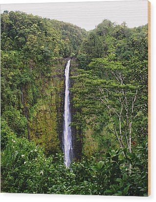 waterfall Hawai Wood Print by Luis and Paula Lopez