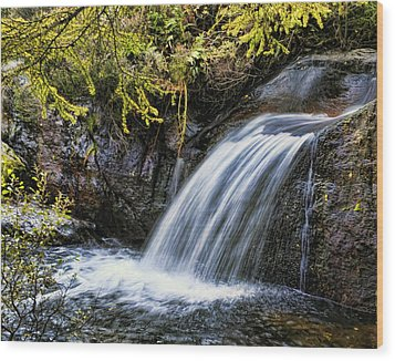 Wood Print featuring the photograph Waterfall by Hugh Smith