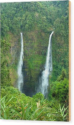 Wood Print featuring the photograph waterfall in Laos by Luciano Mortula