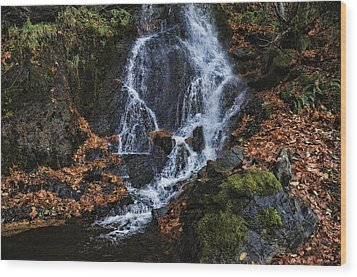 Waterfall Wood Print by Lawrence Christopher