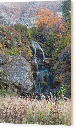 Wood Print featuring the photograph Waterfall Marion Creek by Gary Rose