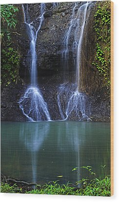 Wood Print featuring the photograph Waterfall- Micoud- St Lucia by Chester Williams