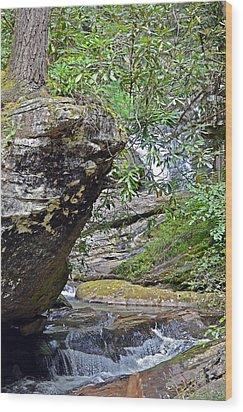 Waterfall Rock Wood Print by Susan Leggett