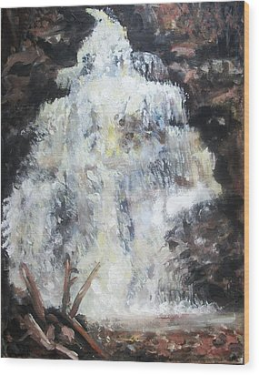 Waterfall Wood Print by Sarah Farren