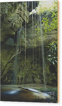 Waterfalls  Wood Print by Jacques Jangoux and Photo Researchers