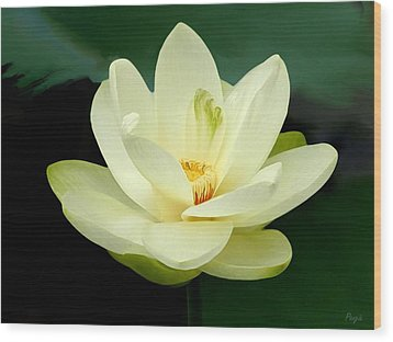 Wood Print featuring the digital art Waterlily by John Pangia