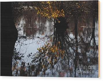 Wood Print featuring the photograph Waterpainting by Tamera James