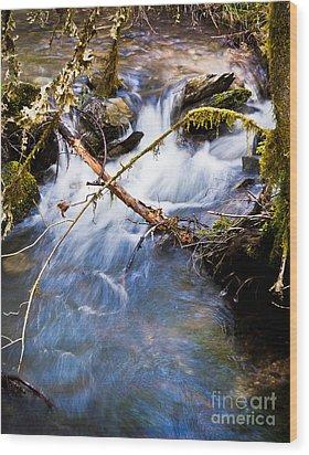 Waters Creek - Spring 2011 Wood Print by Jim Adams