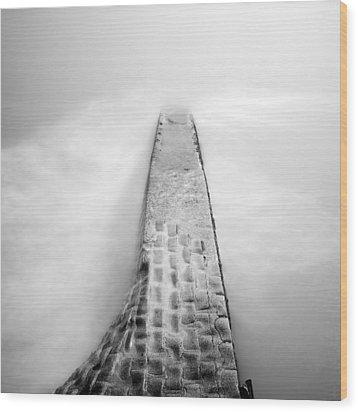 Waterscape 02 Wood Print by Nina Papiorek