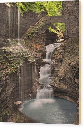 Watkins Glen Gorge Wood Print