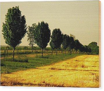 Way Home Wood Print by Joe Jake Pratt