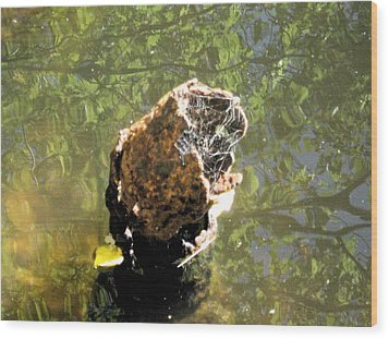 Wood Print featuring the photograph We All Float Down Here by Bruce Carpenter