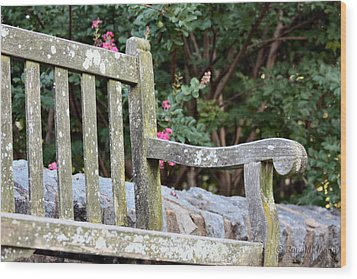 Weathered Bench Wood Print