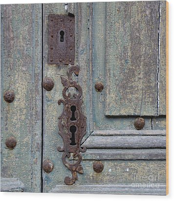Weathered Wood Print by Lainie Wrightson