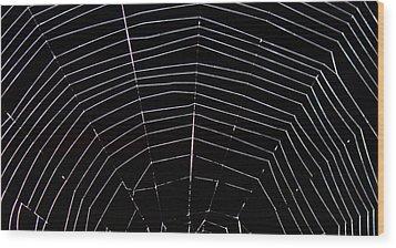 Web Wonder 2 Wood Print by Elizabeth Sullivan