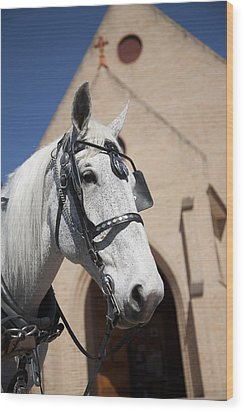 Wood Print featuring the photograph Wedding Horse  by Carole Hinding