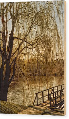 Weeping Willow And Bridge Wood Print by Barbara Middleton