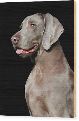 Weimaraner  Wood Print by Julie L Hoddinott