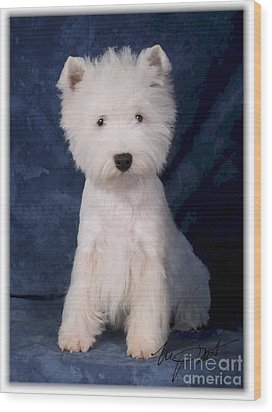 West Highland White Terrier Pup Wood Print by Maxine Bochnia
