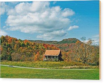 West Virginia Homestead Wood Print by Steve Harrington