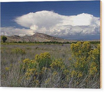 Western Colorado Cloudscape Wood Print