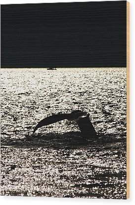 Whale In Sunset Wood Print by Paul Ge