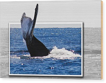 Whale Tail Wood Print by Jean Noren