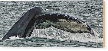 Whale Tail Wood Print by Jon Berghoff