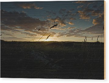 Wheat Fields  Wood Print by Beverly Cash