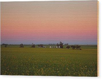 Wheatbelt Country Wood Print by Serene Maisey