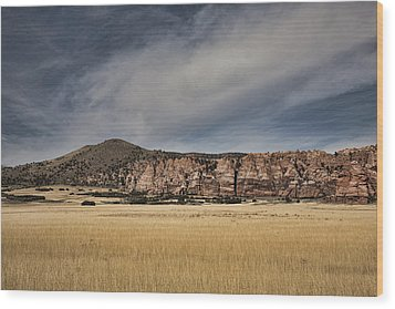 Wood Print featuring the photograph Wheatfield Zion National Park by Hugh Smith