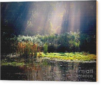 When Morning Hits The Marsh Wood Print by Carol Groenen