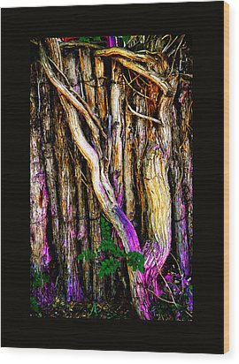 Wood Print featuring the photograph When Sound Is Color by Susanne Still
