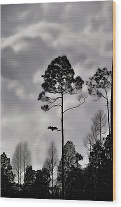 When The Air Gets Too Thin Wood Print by Jan Amiss Photography