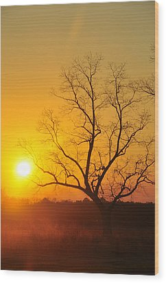 When The Day Is Over Wood Print by Jan Amiss Photography