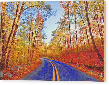 Where The Road Snakes Wood Print by Douglas Barnard