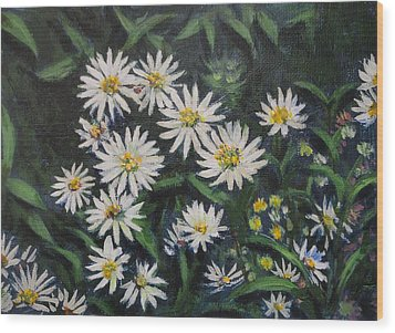 Whie Asters Wood Print by Usha Shantharam