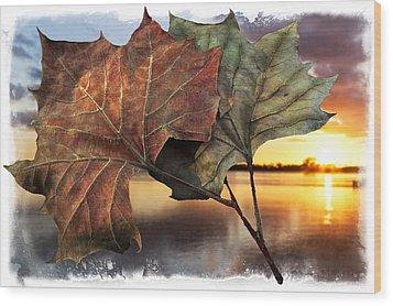 Whispers In The Wind Wood Print by Debra and Dave Vanderlaan