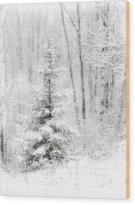 Whispers The Snow Wood Print by Angie Rea