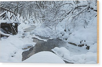 Whist Of December Wood Print by Ferenc Farago - Photograph Art