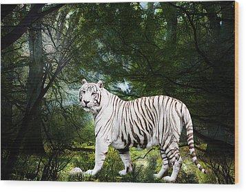 White Bengal Wood Print by Elizabeth Hart