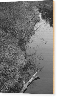 Wood Print featuring the photograph White Branch Riverside  by Kathleen Grace