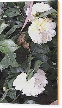White Camellia Wood Print by Mindy Newman