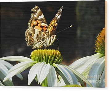 Wood Print featuring the photograph White Cone Flower Visit by Nava Thompson