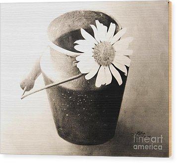 White Daisy Wood Print by Muna Abdurrahman