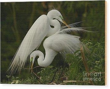 White Egrets Working Together Wood Print by Myrna Bradshaw