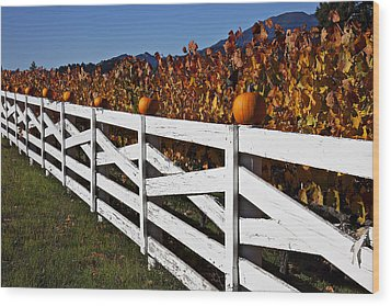 White Fence With Pumpkins Wood Print by Garry Gay
